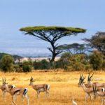 Namibia - ViaRegia Turismo