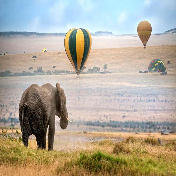 Imagem do paconte Descubra a África do Sul e Quênia