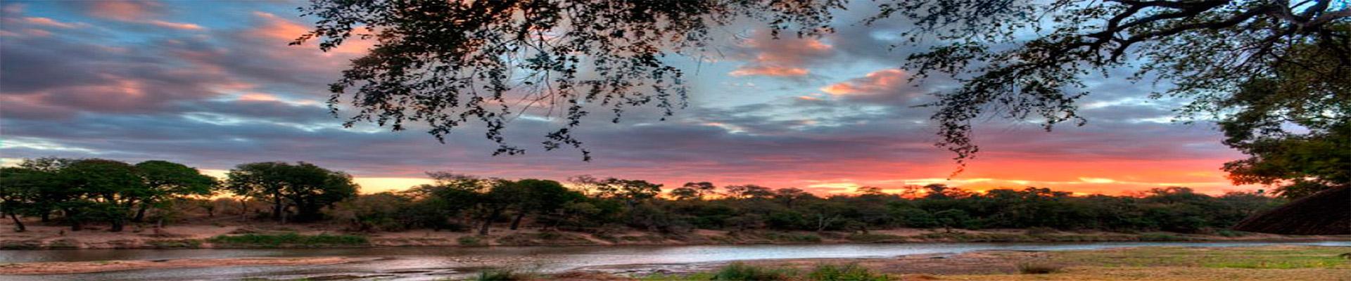 Roteiro África Experience