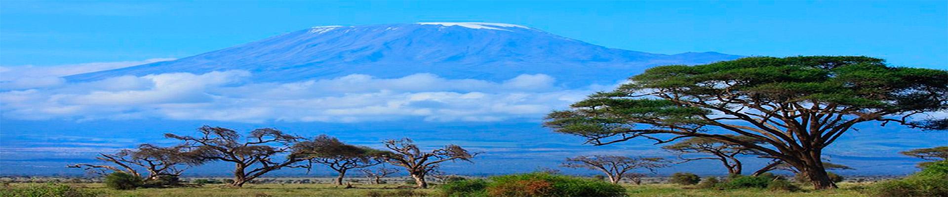 Quênia Clássica