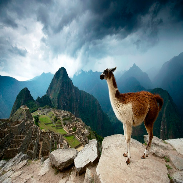 Imagem do paconte Lima e Machu Picchu Completo