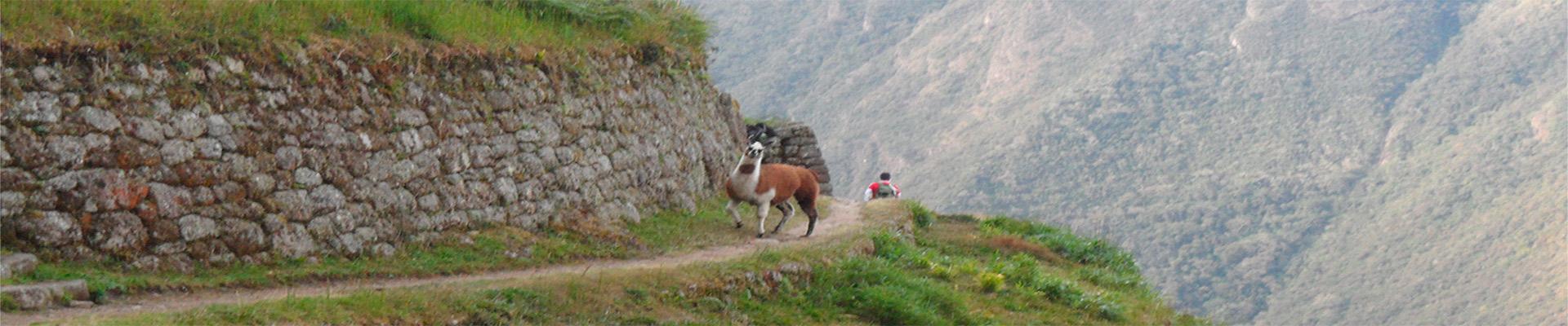 TRILHA INCA CURTA