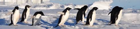 Antártida Clássica