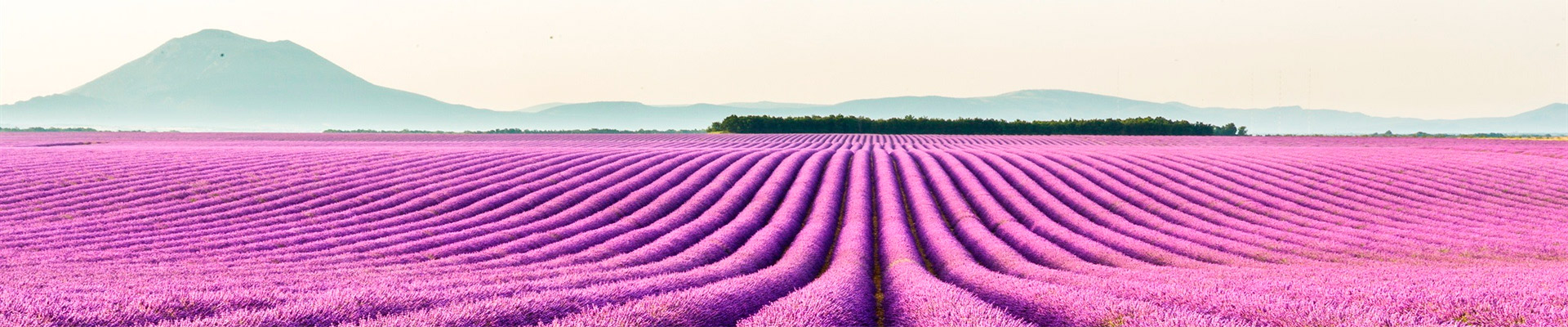 Roteiro de Carro – Provence e Riviera Francesa