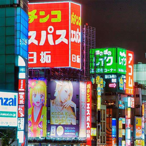 Imagem do paconte Pacote de Viagem Terrestre - Tóquio